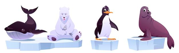 Desenhos animados de animais selvagens em blocos de gelo, baleia, urso branco, pinguim e foca.