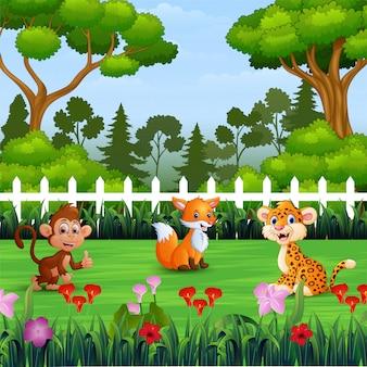 Desenhos animados de animais selvagens no parque