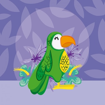 Desenhos animados de aves exóticas