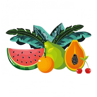 Desenhos animados de frutas tropicais