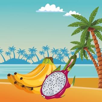 Desenhos animados de ícone de frutas tropicais exóticas