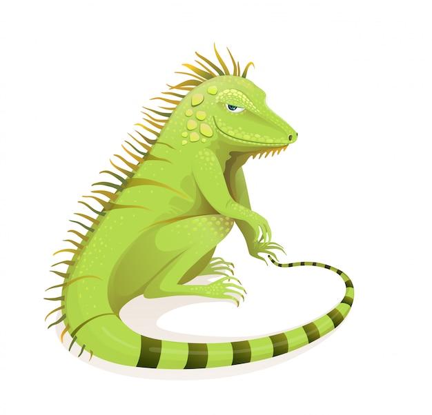 Desenhos animados de iguana desenhada mão realista. selva exótica verde e ilustração de zoologia de répteis da floresta tropical. clipart isolado de animais e vertebrados.