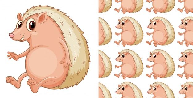 Desenhos animados de padrão de ouriço sem emenda e isolado