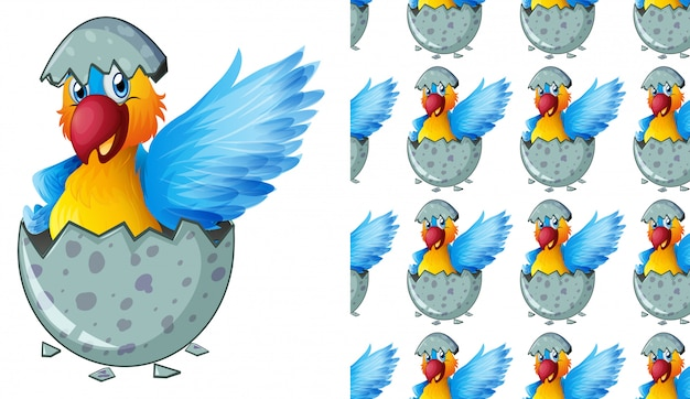 Desenhos animados de padrão papagaio isolado
