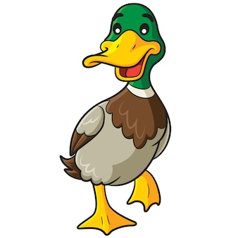 Desenhos animados de pato