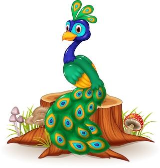 Desenhos animados de pavão bonito no toco de árvore
