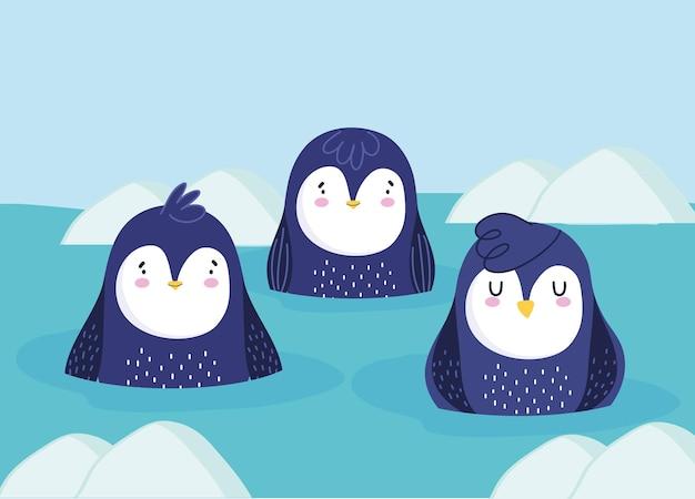 Desenhos animados de pinguins nadando em água gelada