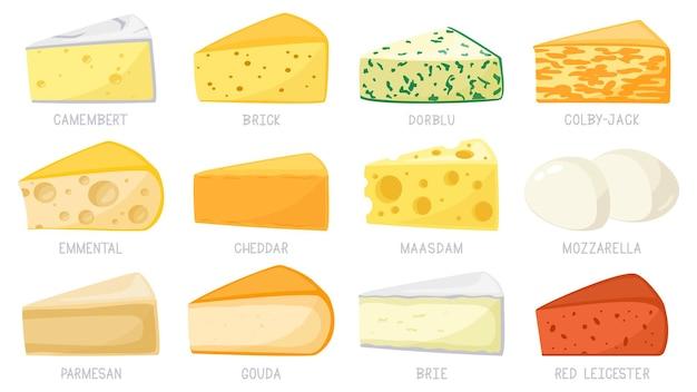 Desenhos animados de tipos de queijo isolados no branco