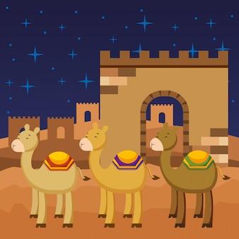 Desenhos animados de três camelos.