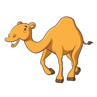 Desenhos animados do camelo