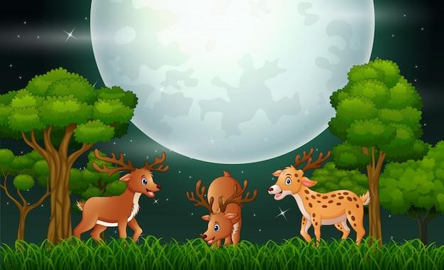 Desenhos animados dos cervos que jogam na paisagem da noite