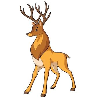 Desenhos animados dos cervos