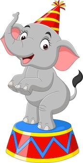 Desenhos animados engraçados de elefante de circo em pé