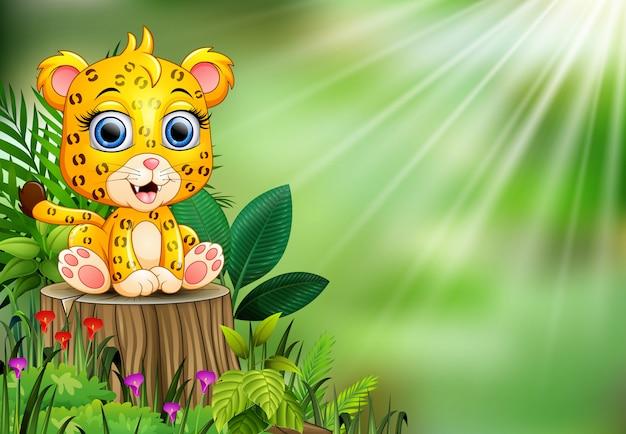 Desenhos animados feliz bebê leopardo em pé no tronco de árvore com plantas verdes