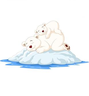 Desenhos animados mãe e bebê urso polar dormindo no bloco de gelo