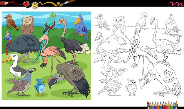 Desenhos animados pássaros grupo animal colorir página