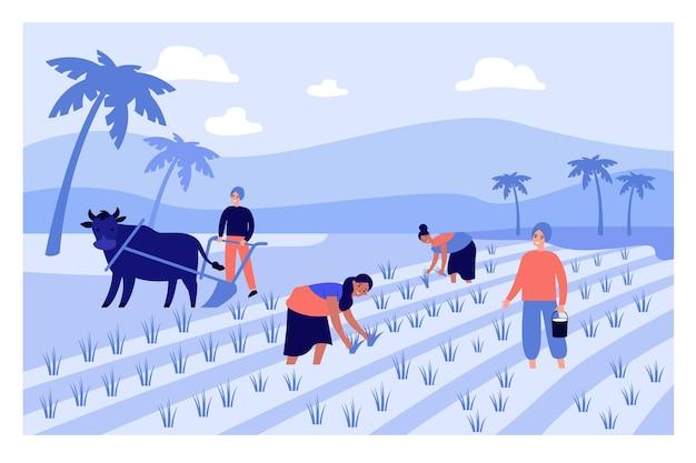Desenhos animados trabalhando na ilustração plana de uma fazenda indiana