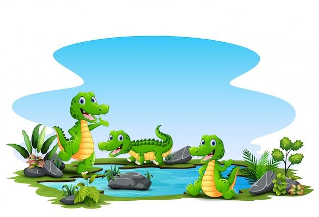 Desenhos animados três crocodilo ao redor da lagoa pequena