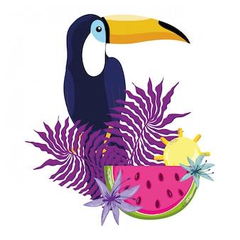 Desenhos animados tropicais do tucano do pássaro