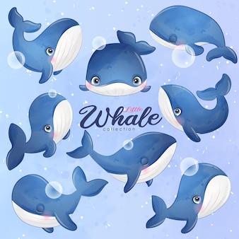 Desenhos de baleia fofa posam em conjunto de ilustração em estilo aquarela