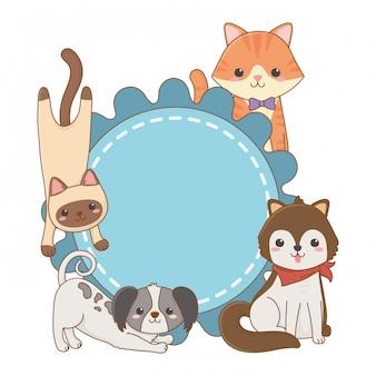 Desenhos de gatos e cães no design de moldura arredondada