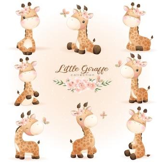 Desenhos de girafa fofa posando com ilustração floral