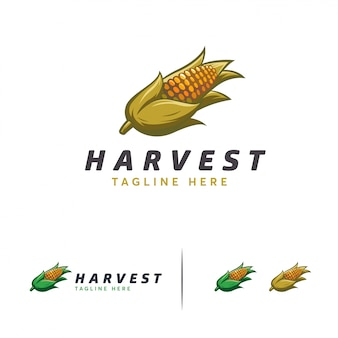 Desenhos de logotipo de colheita de milho