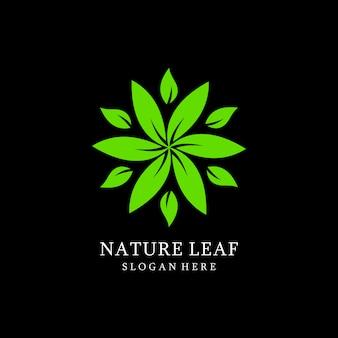 Desenhos de logotipo de folha