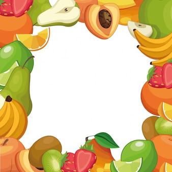 Desenhos de moldura quadrada de frutas
