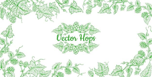 Desenhos de quadro de esboço de ramo de planta de lúpulo para design de embalagem de cerveja