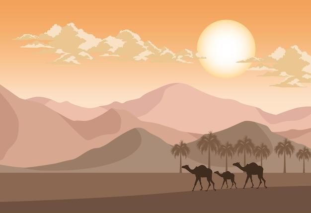 Deserto com camelos