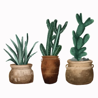 Deserto de plantas mão desenhada