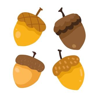 Design coleção acorn
