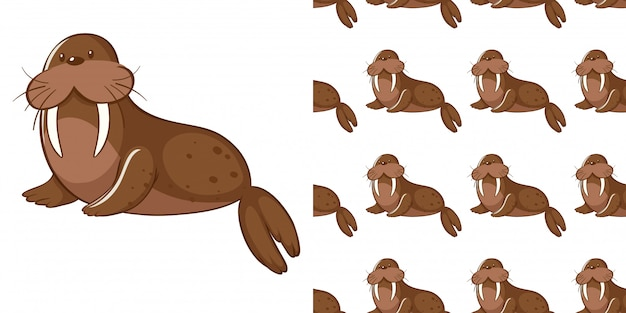 Design com leão-marinho bonito padrão sem emenda