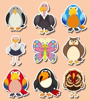 Design de adesivos com diferentes tipos de aves