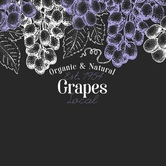 Design de bagas de uva. entregue a ilustração tirada da fruta do vetor na placa de giz. estilo botânico retro gravado.