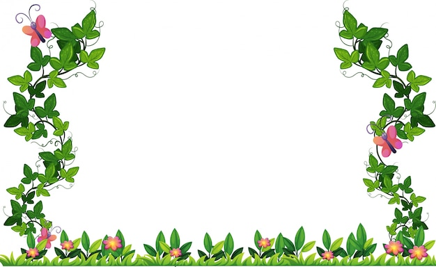 Design de borda com videira e borboletas