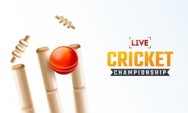 Design de cartaz de campeonato de críquete ao vivo