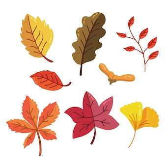 Design de coleção de folhas de outono