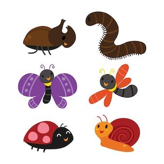 Design de coleção de insetos
