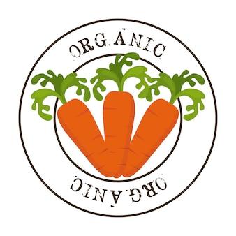 Design de comida saudável