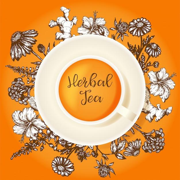 Design de embalagem de chá de ervas. ervas orgânicas e flores silvestres. mão esboçou ilustração de hibisco, trevo, calêndula e echinacea.