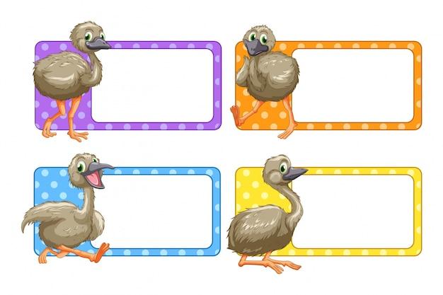 Design de etiqueta com avestruzes
