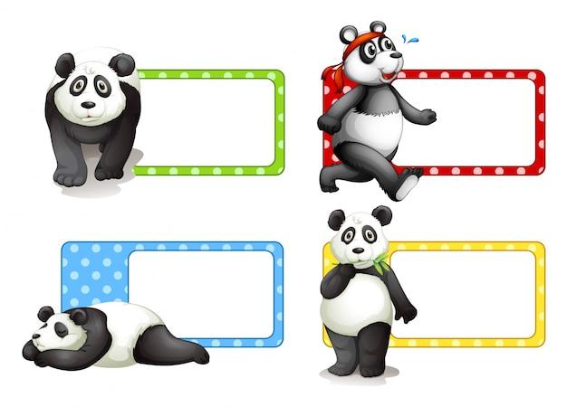 Design de etiquetas com ilustração pandas