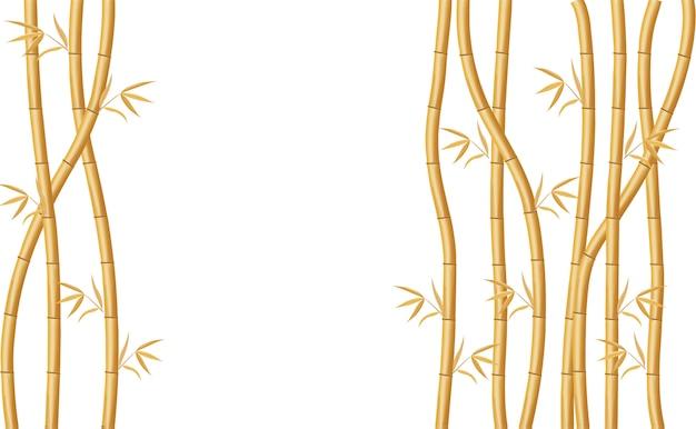 Design de fundo com bambu dourado e ilustração de folhas verdes