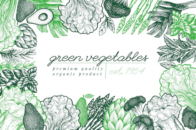 Design de fundo vegetal verde. mão desenhada ilustração vetorial de comida. quadro vegetal de estilo gravado.