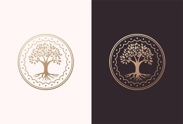 Design de logotipo de árvore da vida em um elemento de quadro de círculo.
