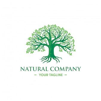 Design de logotipo de árvore verde de ervas naturais vetor premium