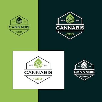 Design de logotipo de cannabis óleo cbd