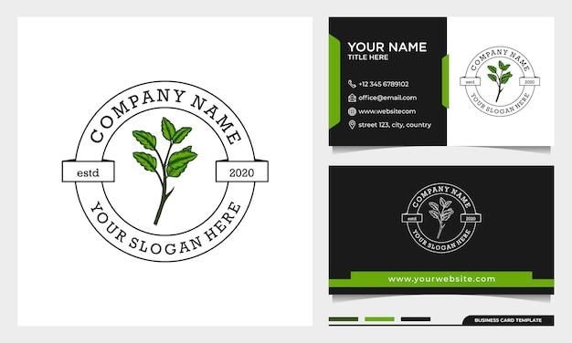 Design de logotipo de folha de beleza simples, pode ser usado para salão de beleza, spa, ioga, moda com modelo de cartão de visita